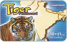 Tiger-1-1.jpg