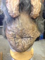 Krampus fat suit