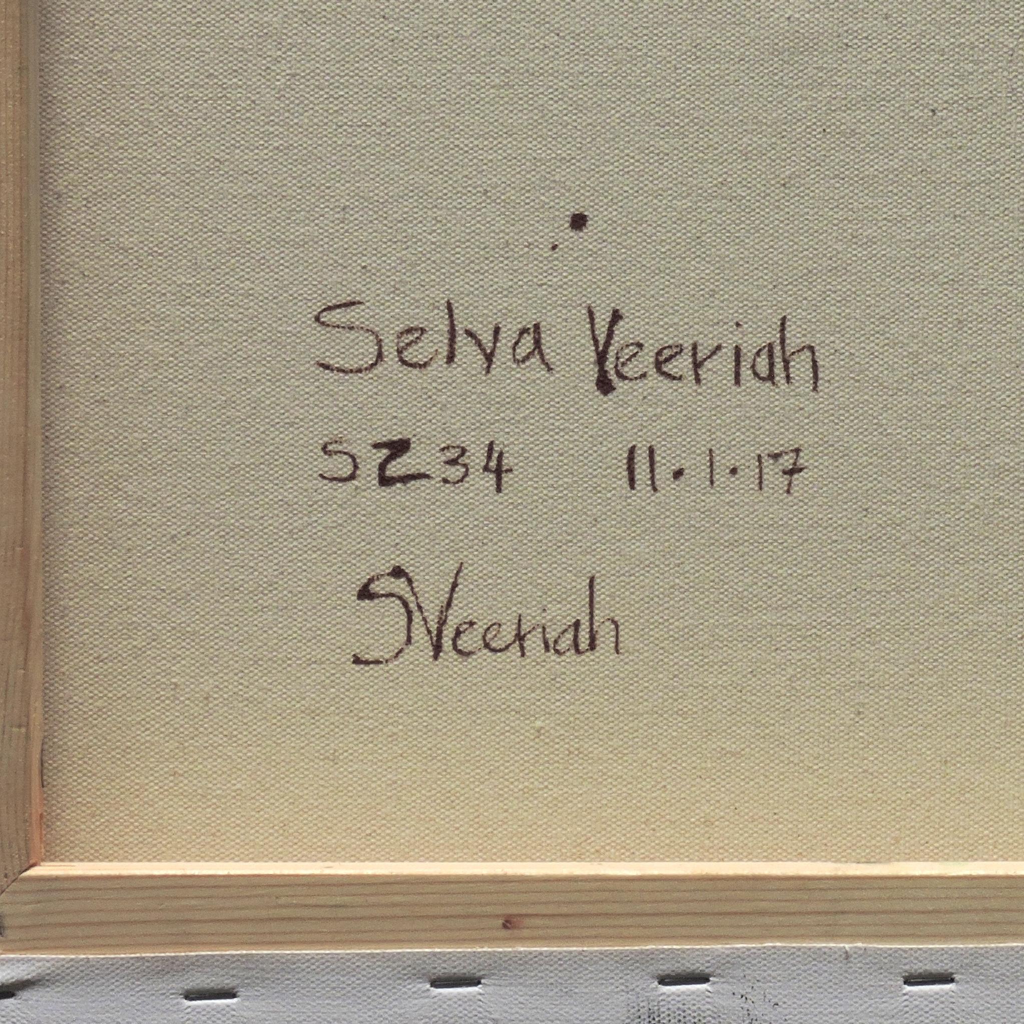 S234 Close-up (Signature)