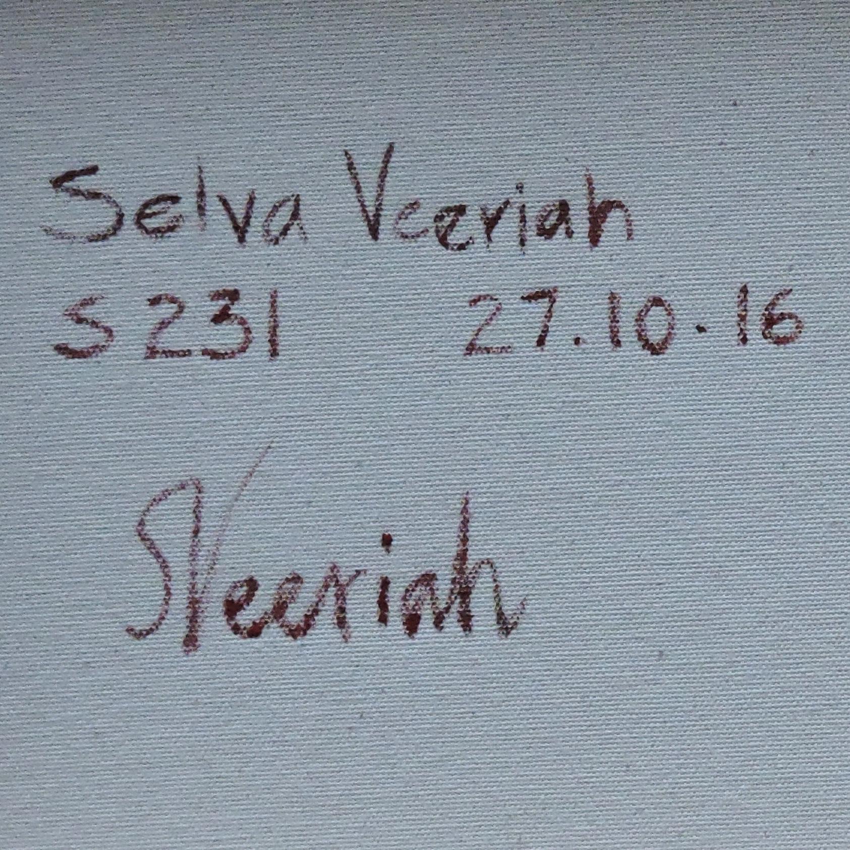 S231 Close-up (Signature)