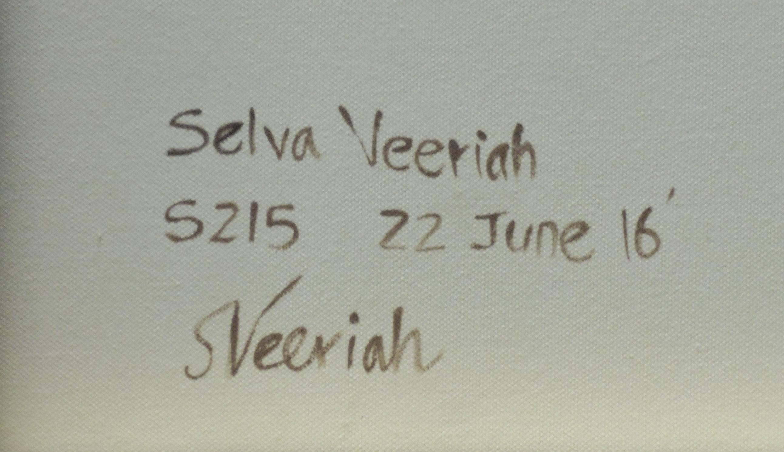 S215 Close-up (Signature)