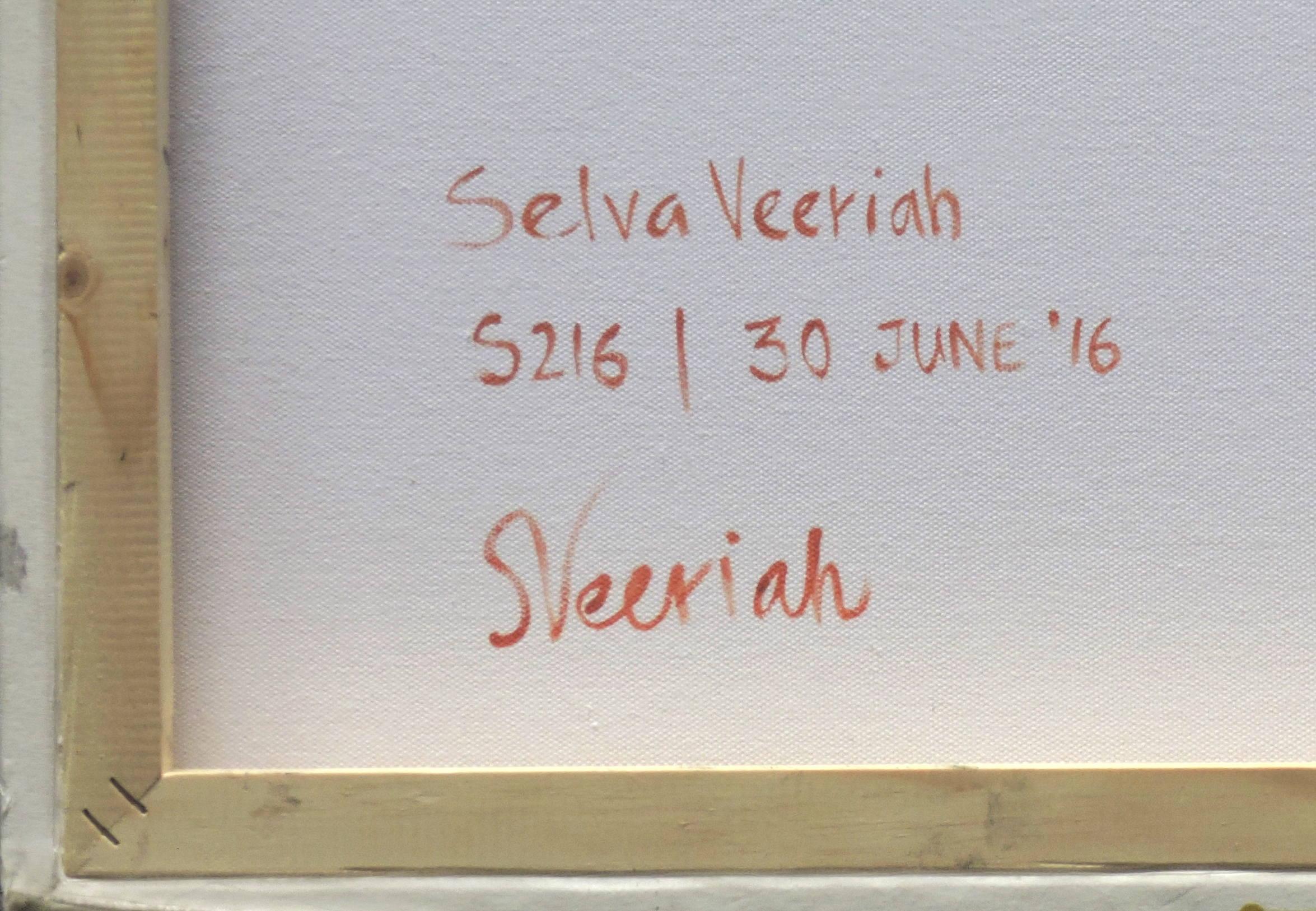 S216 Close-up (Signature)