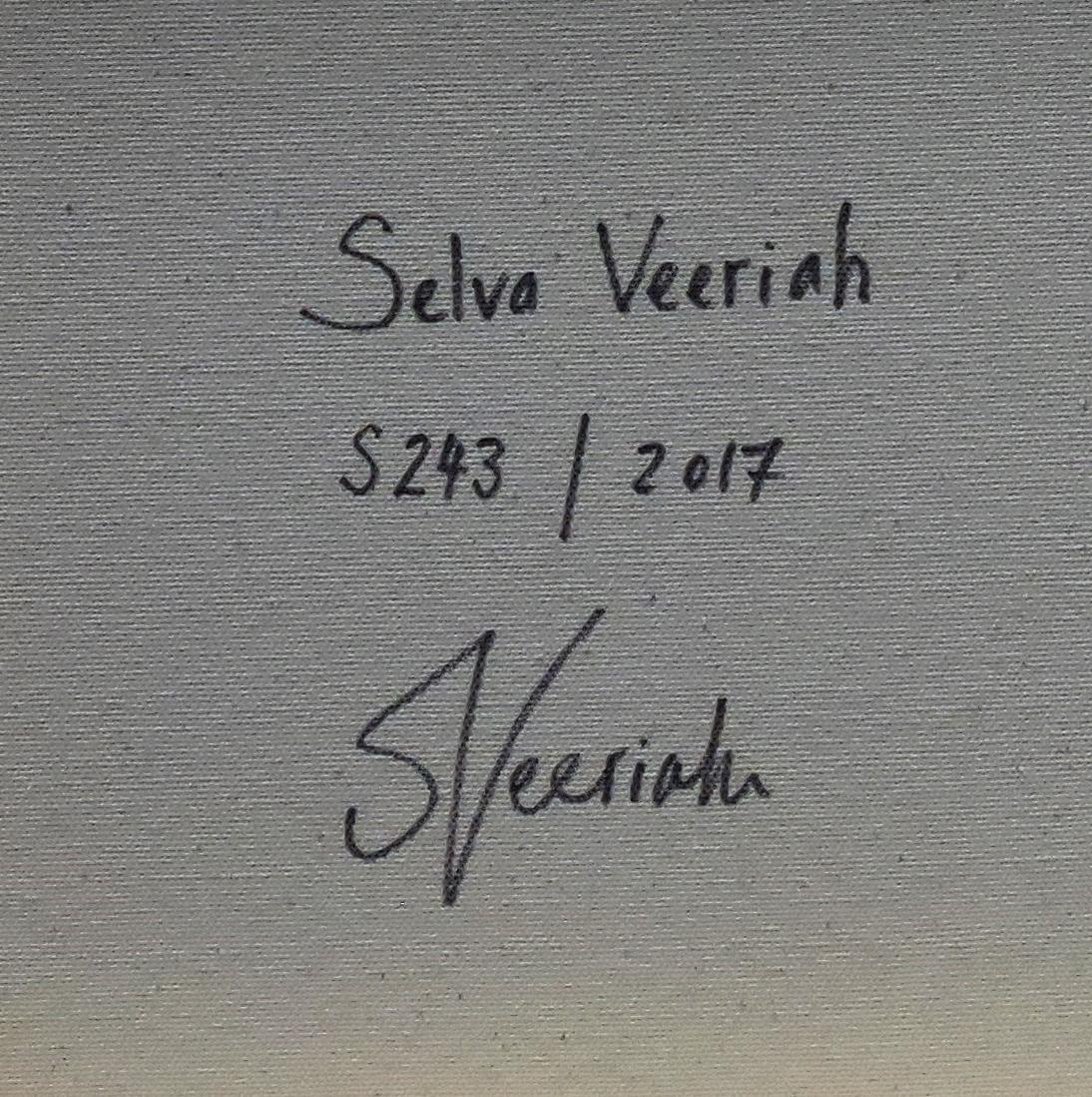 S243 Close-up (Signature)