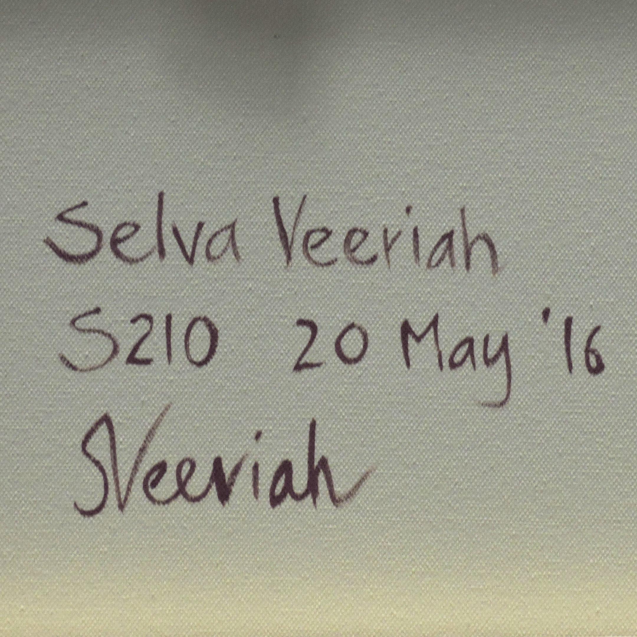 S210 Close-up (Signature)