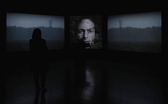 Webb-Ellis-installation-shot-02.jpg