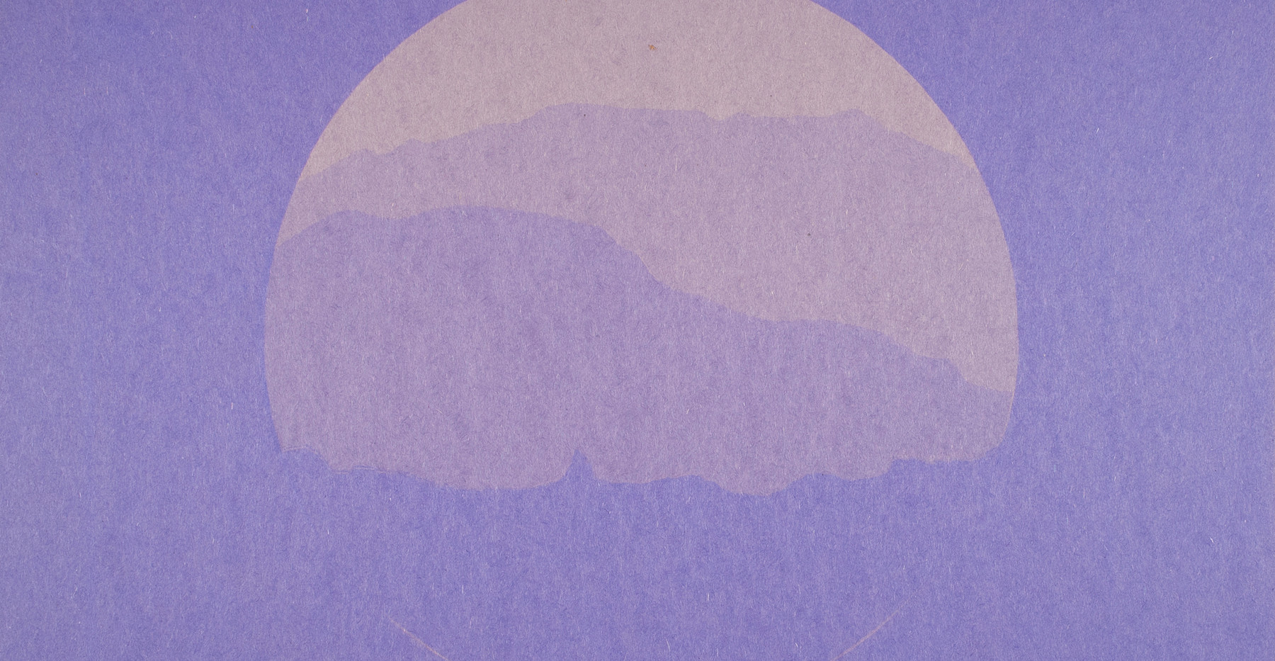 sunprint3.jpg