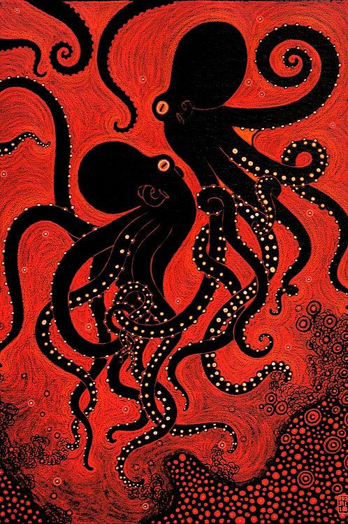 """""""Callistoctopus Macropus"""""""
