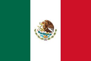 Mexio Flag.jpeg