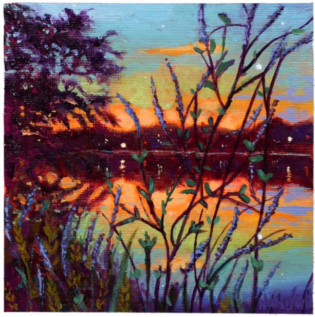 Kindling Twilight No. 53, Fletcher Wildlife Gardens Looking At Dows Lake & the Queen Elizabeth Driveway