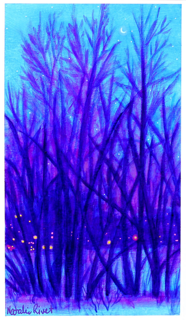 Kindling Twilight No.56, Britannia Park