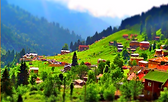 Trabzon Turu,Uzungöl Turu,Rize Gezisi,Ayder Yaylası Gezisi,Erzurum,Erzurum Gezi,Erzurum Tur,Erzurum Seyahat,Esadaş,Dadaş,Safir Tur,Palandöken Safir Tur,