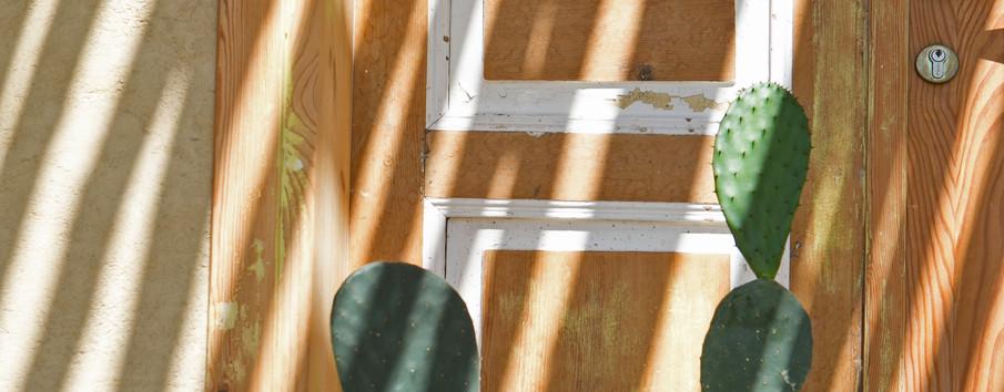 זו הדלת הנבחרת . דלת ישראלית מזה עשרות בשנים.