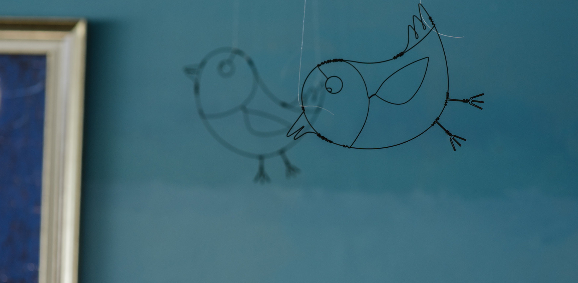 ציפורים חייכניות  גם הן הצטרפו לחלל