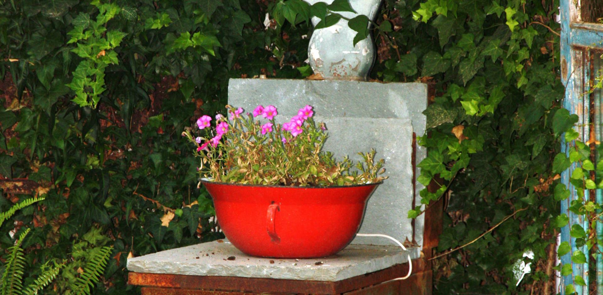 משקל ביתי זרוק קיבל מעמד של שידה בחצר הבית