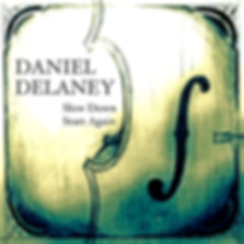 SlowDownStartAgain covert - Daniel Delan