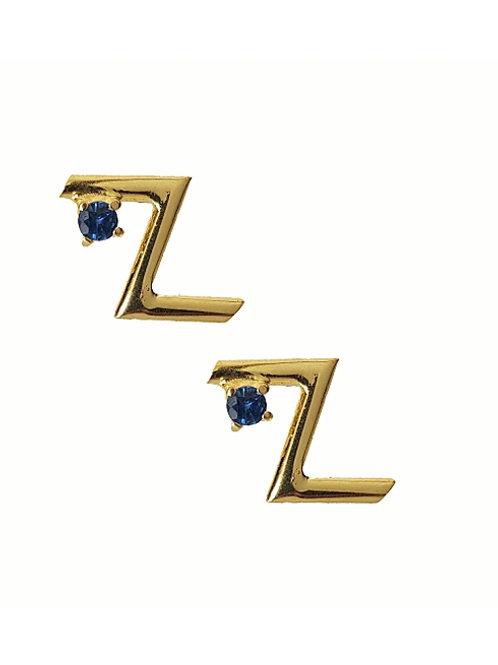 Rune Success Earrings