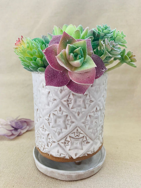 Full Textured White Succulent Pot.jpg