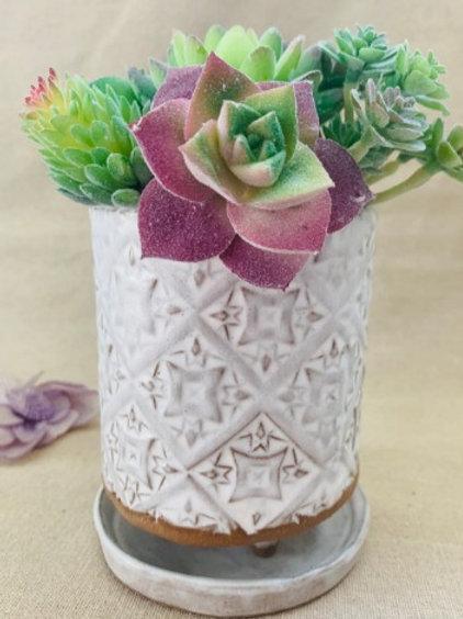 White Textured Ceramic Succulent Planter