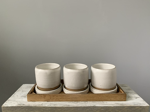 Ceramic Succulent Planters | Set of 3