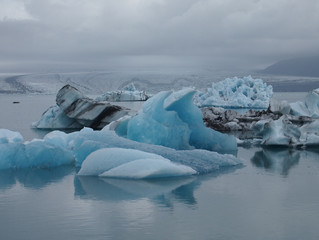 Video Blog. Glaciers - Icebergs - Sea