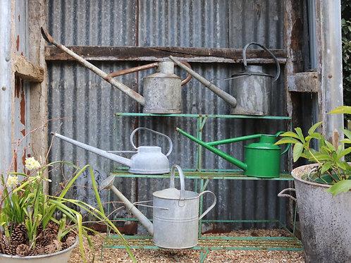 Galvanised Vintage Watering Cans