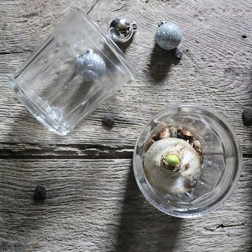 Vintage Glass Confit Jars (set of 3)