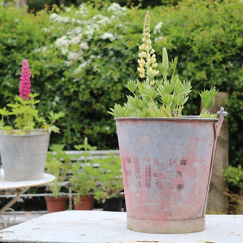 Galvanised zinc planter vintage bucket - Fire Bucket