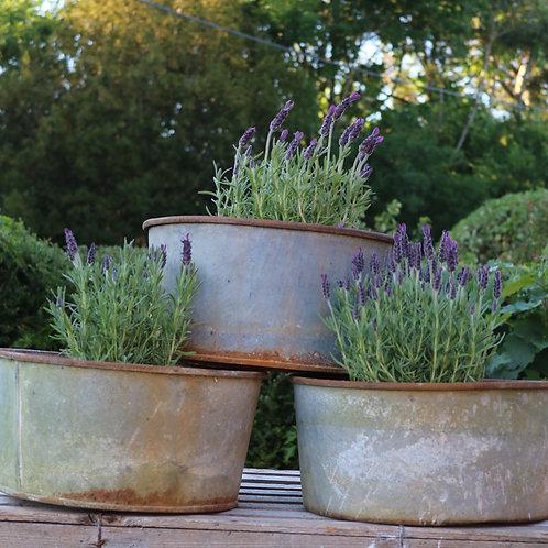 Galvanised Zinc Pan Planters