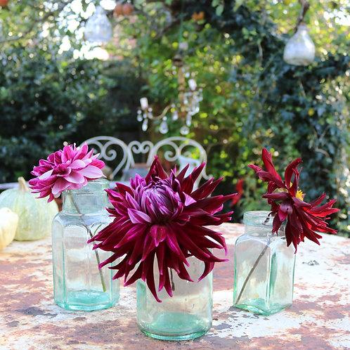 Vintage Glass Jars Vases