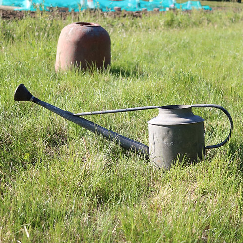 Galvanised Zinc Watering Can with Brass Rose
