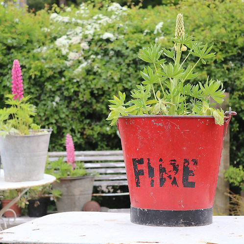 Galvanised zinc planter vintage bucket Fire Bucket