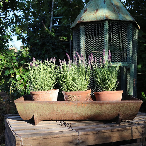 Cast Iron Trough Planter