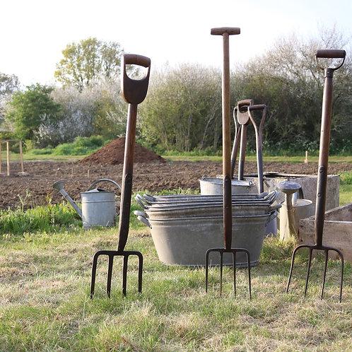 tools in a garden