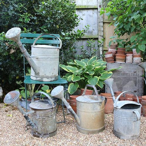 Rustic Galvanised Watering Cans