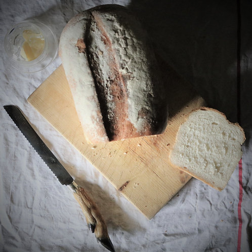 French Vintage Taxidermy Deer Hoof Bread Knife