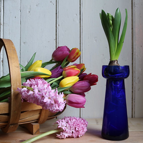 Blue Hyacinth Vase