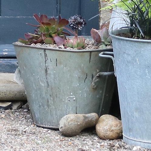 Galvanised Zinc Heavy Bucket Planter