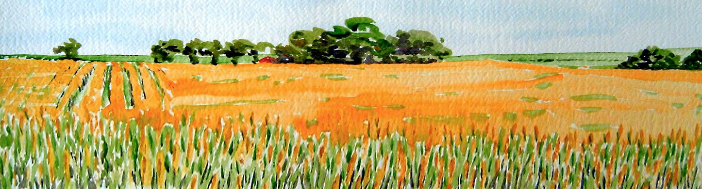 Water Colour Field2