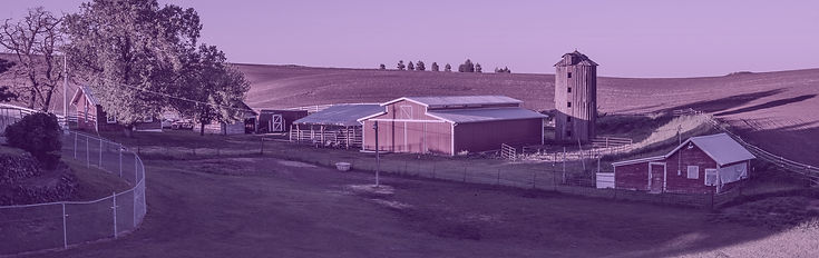Farm Market copy.jpg