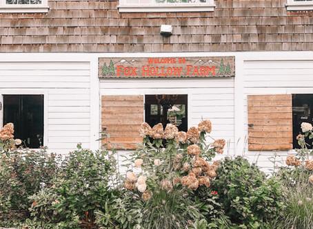 Pumpkin Patchin' - Fox Hollow Farms