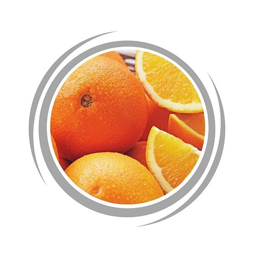 Navel Orange Citrus delivered Perth