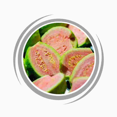 Pink Guava tree delivered Perth