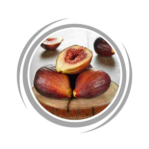 Fig Brown Turkey