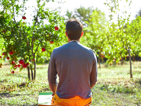 5 Reasons Why Gardening can Make you Healthy