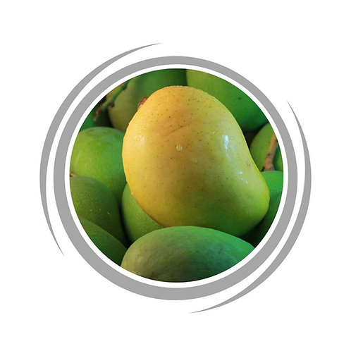 Bambaroo Mango trees delivered Perth