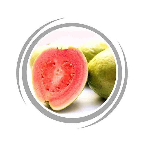 Hawaiian Guava Pink delivered Perth