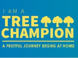 Be a Tree Champion and Help Save the Environment!