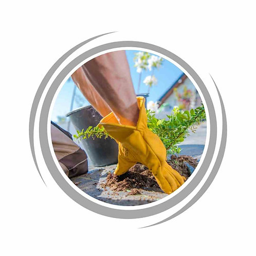 Planting service in Perth