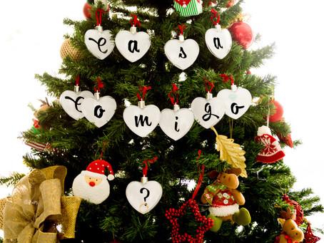 O Pedido - Surpresa de Natal