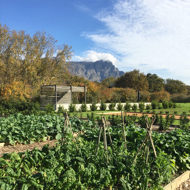 THE VEGETABLE GARDEN AND ORCHARD POOL